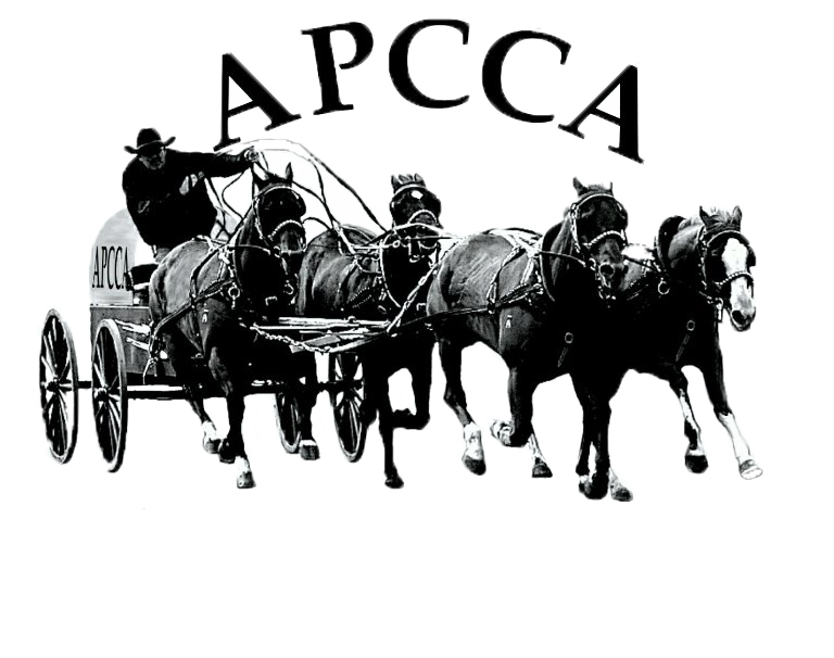 Alberta Professional Chuckwagon And Chariot Association